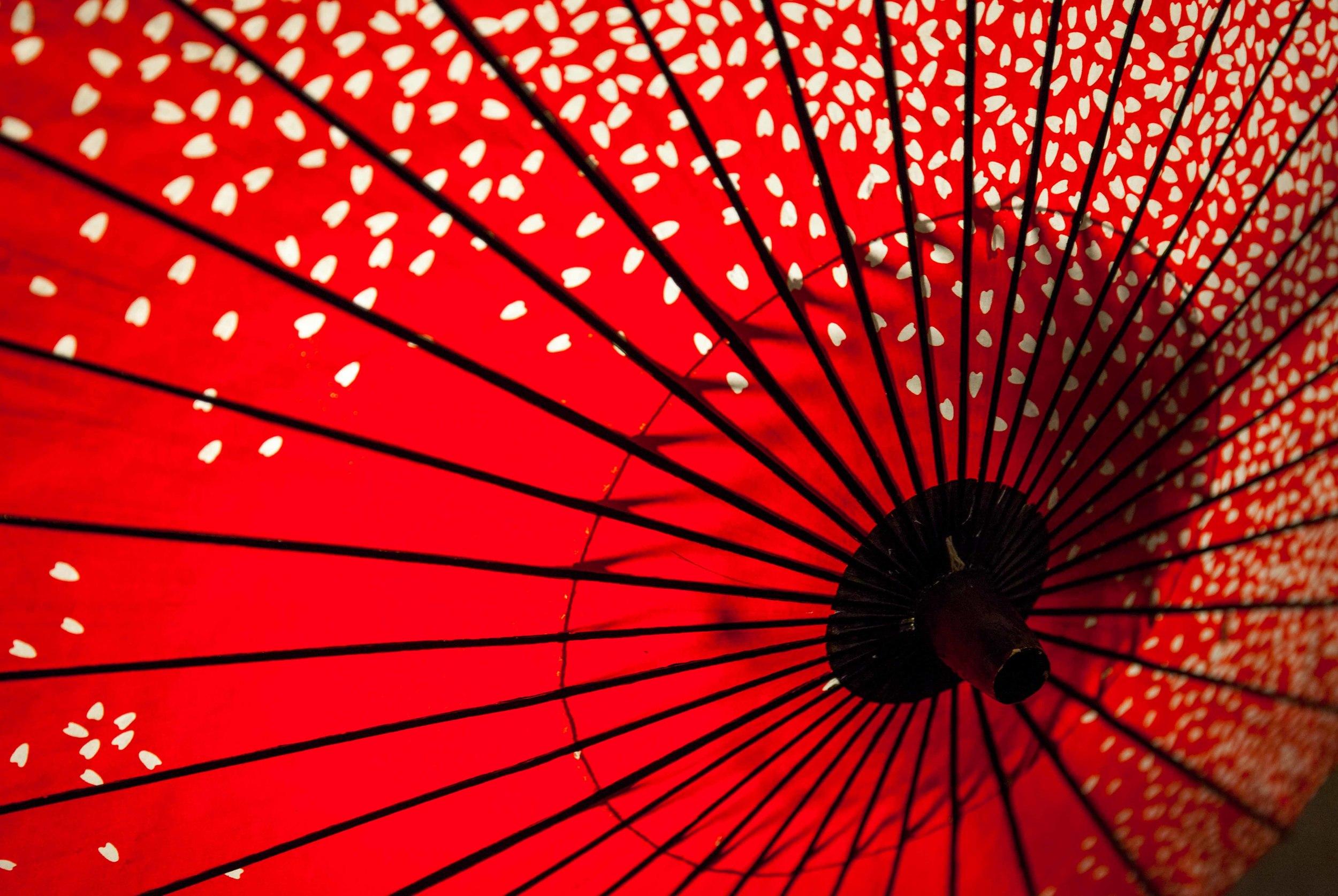 ©David HigginsPhotography-Japan.jpg