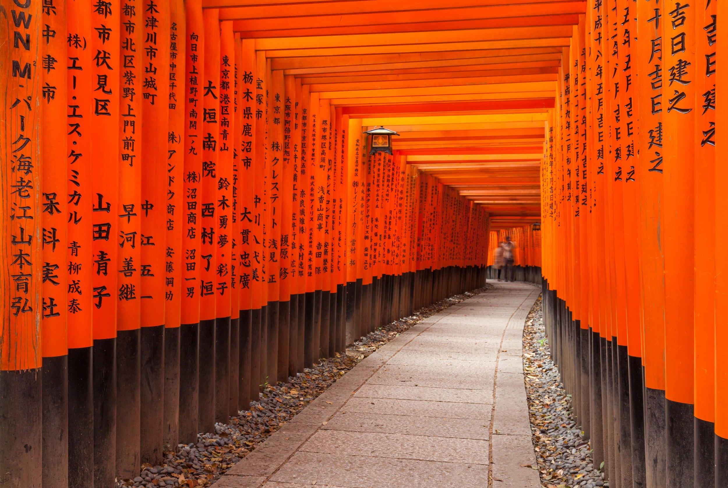 ©David HigginsPhotography-Japan2.jpg