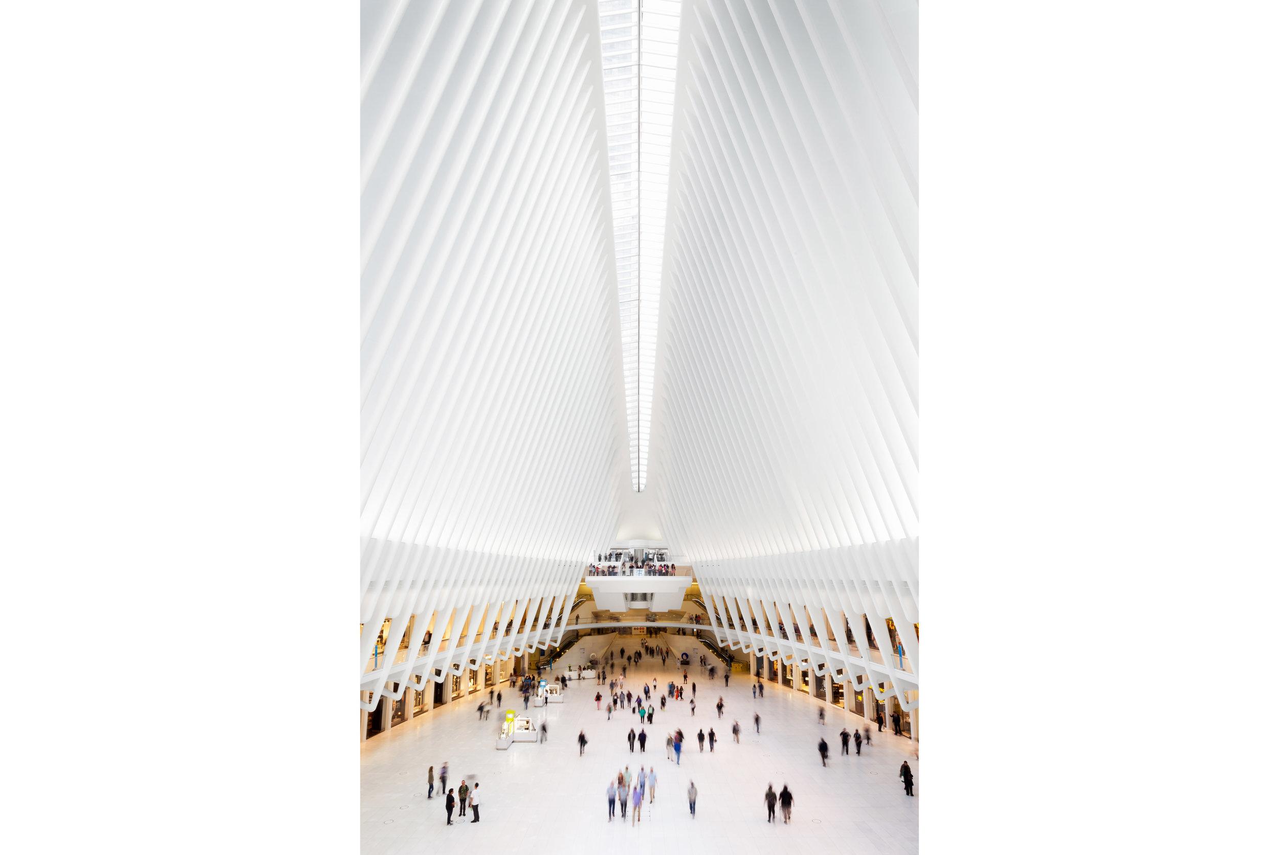 ©David+HigginsPhotography-New Yory Transport Hub.jpg