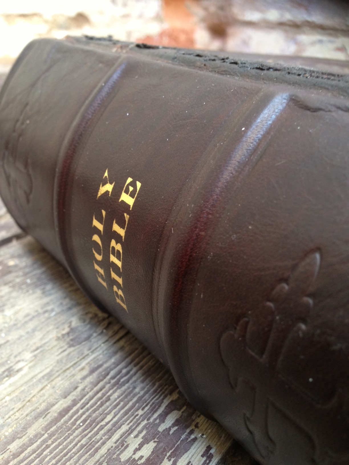 New Spine on Bible Restoration
