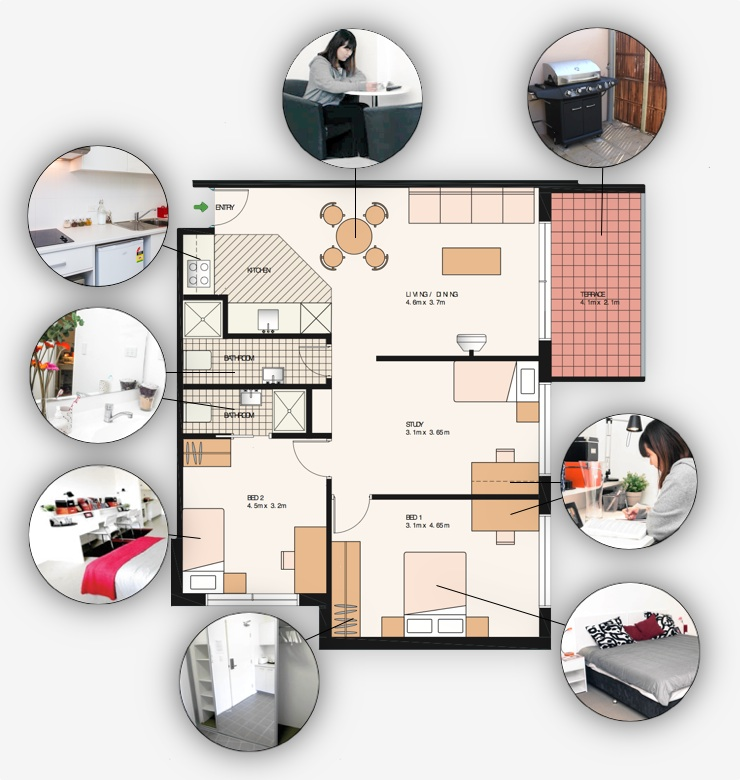 Two bedroom + study shared student accommodation layout