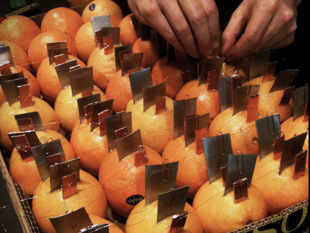 more and more and more oranges