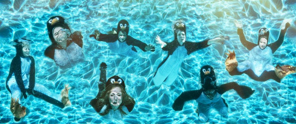Penguin2web.jpg