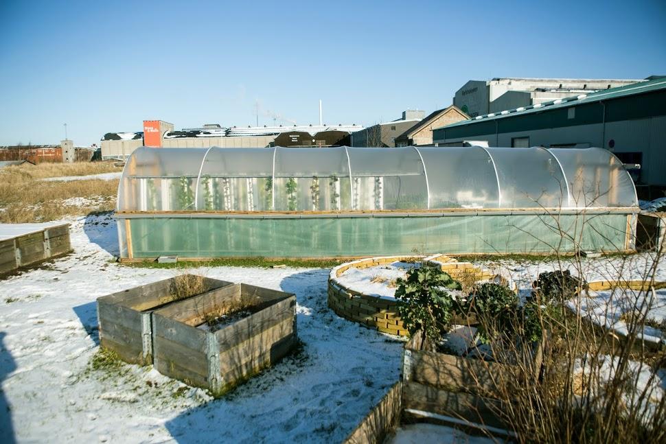 BIOARK.   Både drivhus og forskjellige former for plantekasser er ideelle til urban farming, både på tak og byens andre ubenyttede rum.