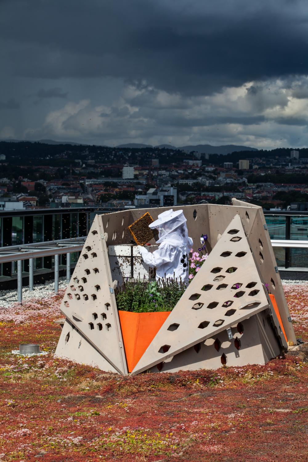 Bigård på taket av PwC tegnet av arkitekt Facundo Arboit fra Mikrourbanisme AS Foto:Matthew Bryce