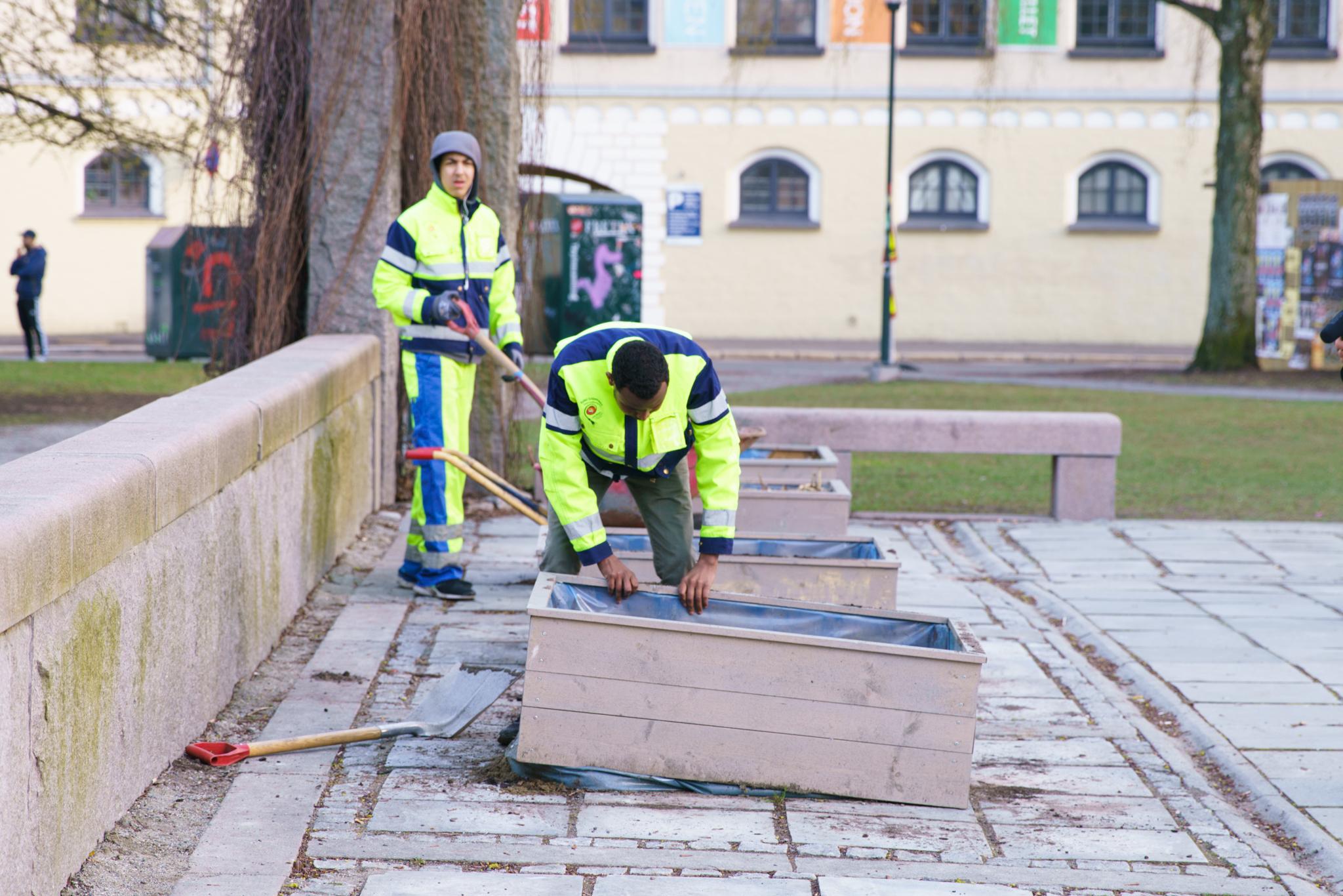 Det jobbes mot åpning, her: dyrkekassene kommer på plass. Foto: Svein Kjøde