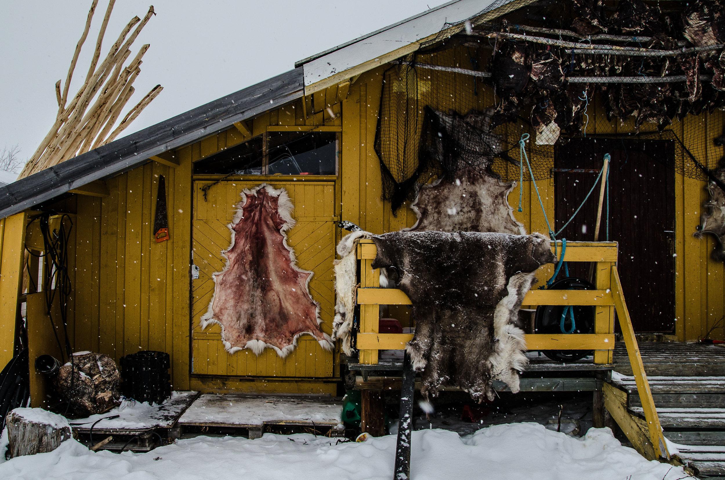 Samisk-heimkunnskap-BILDE1.jpg