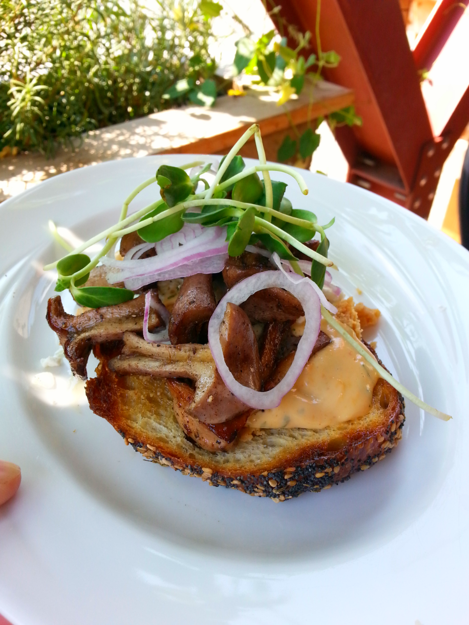 The famous adults-only peanut butter sandwich with roasted bluefoot mushrooms / photo by Michael Mackie