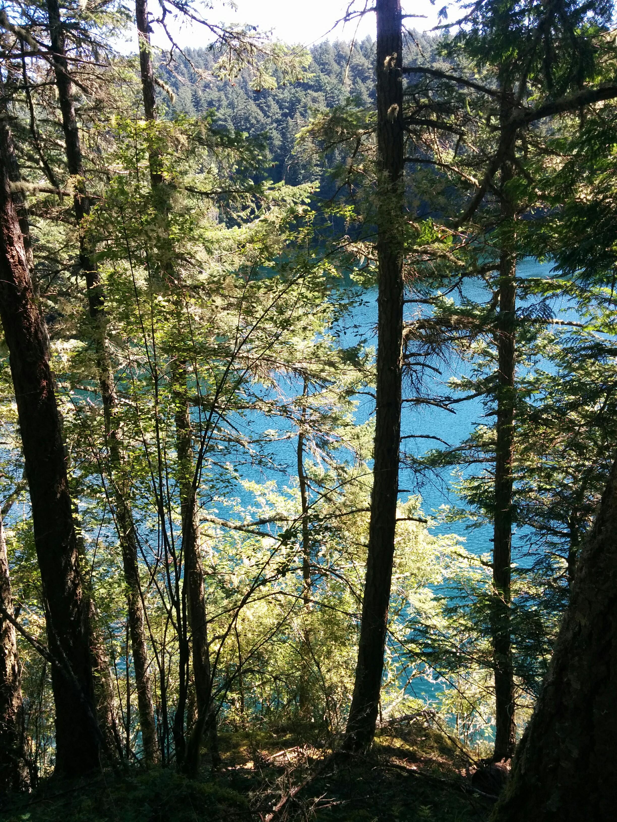 Mountain Lake 1.jpg