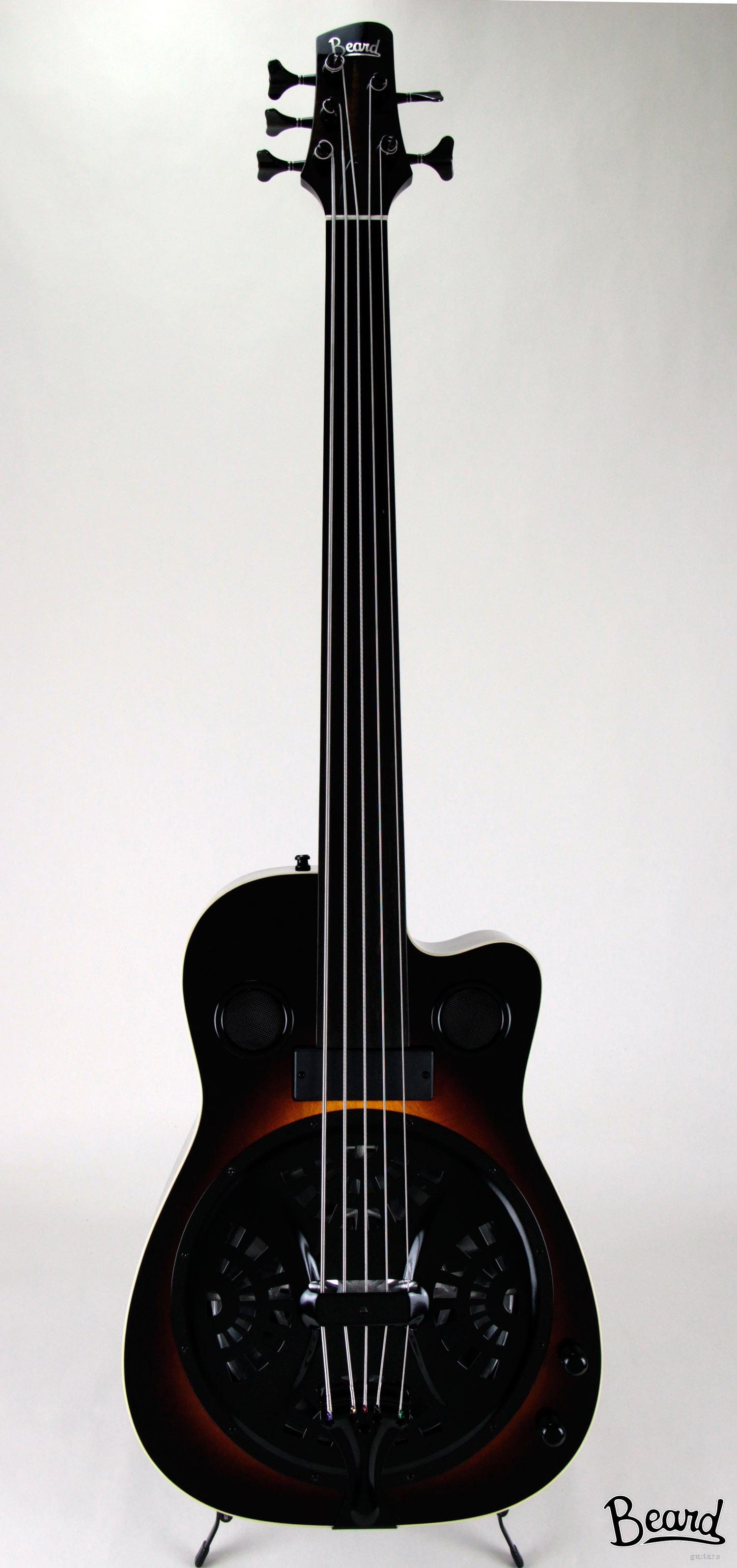 B-Model-5-String-Custom-Fretless-FF.jpg