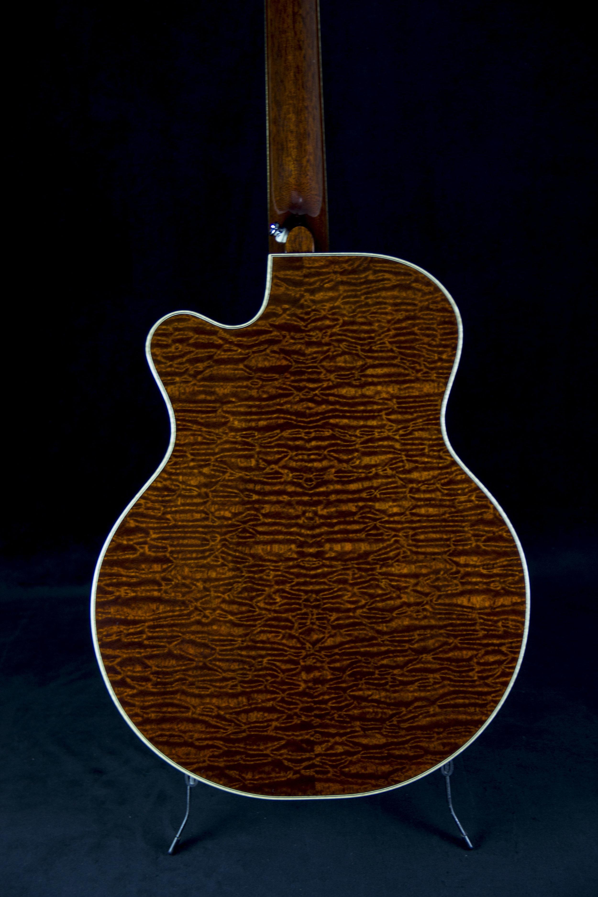 A Model Cutaway Sapele Back 2.jpg