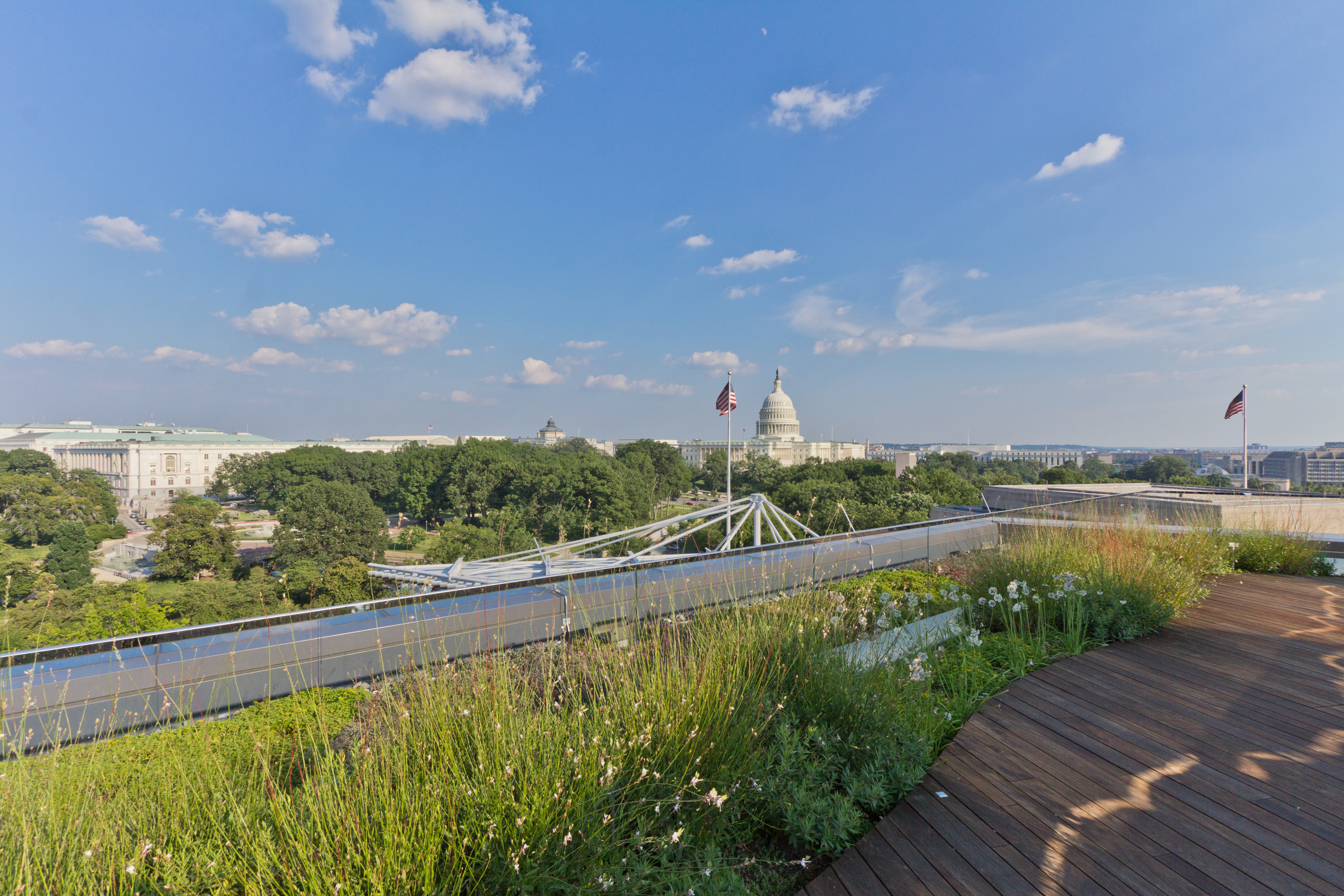 A great view of the Capitol