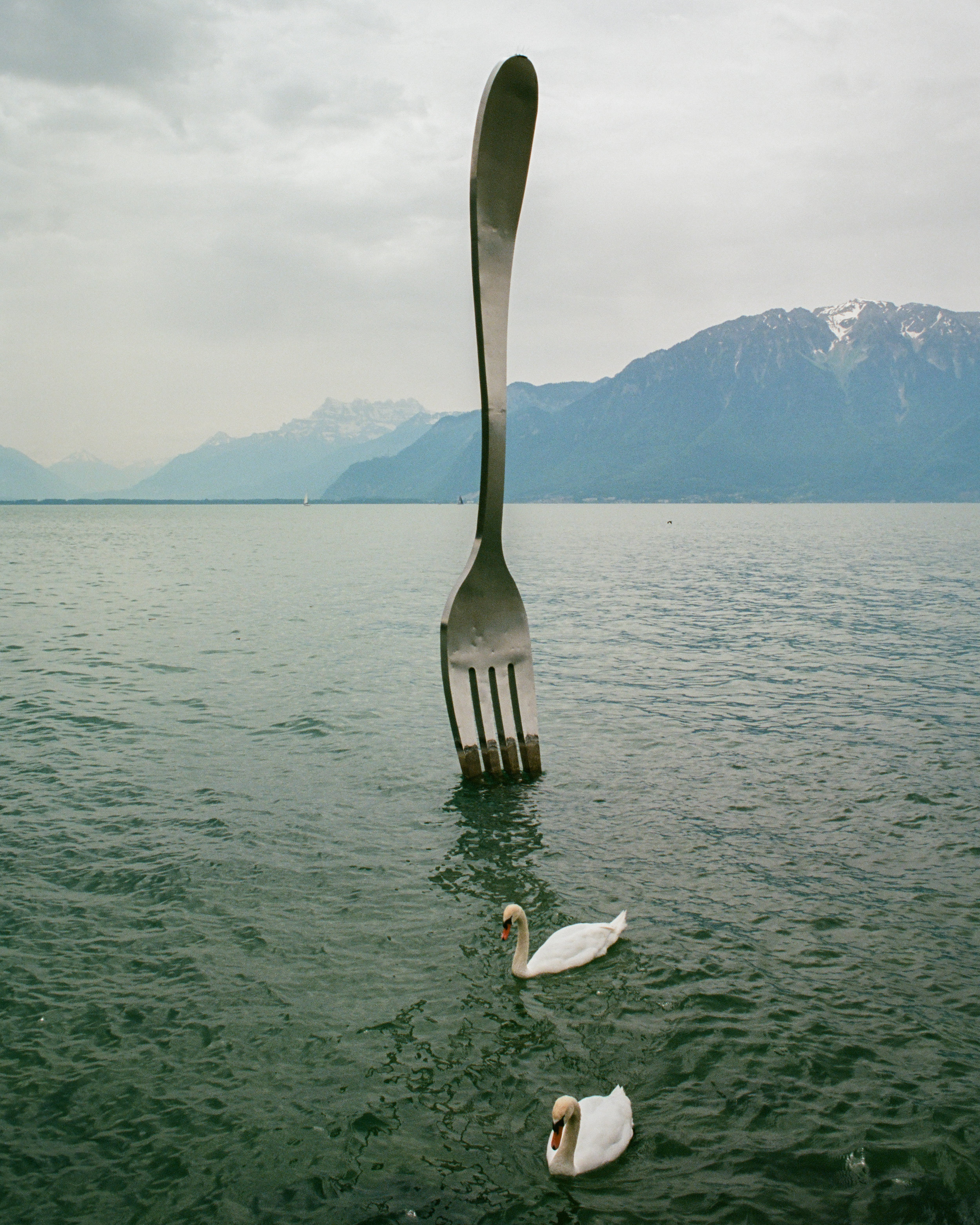 The Fork of Vevey on Lake Geneva. Kodak Porta 160 Film