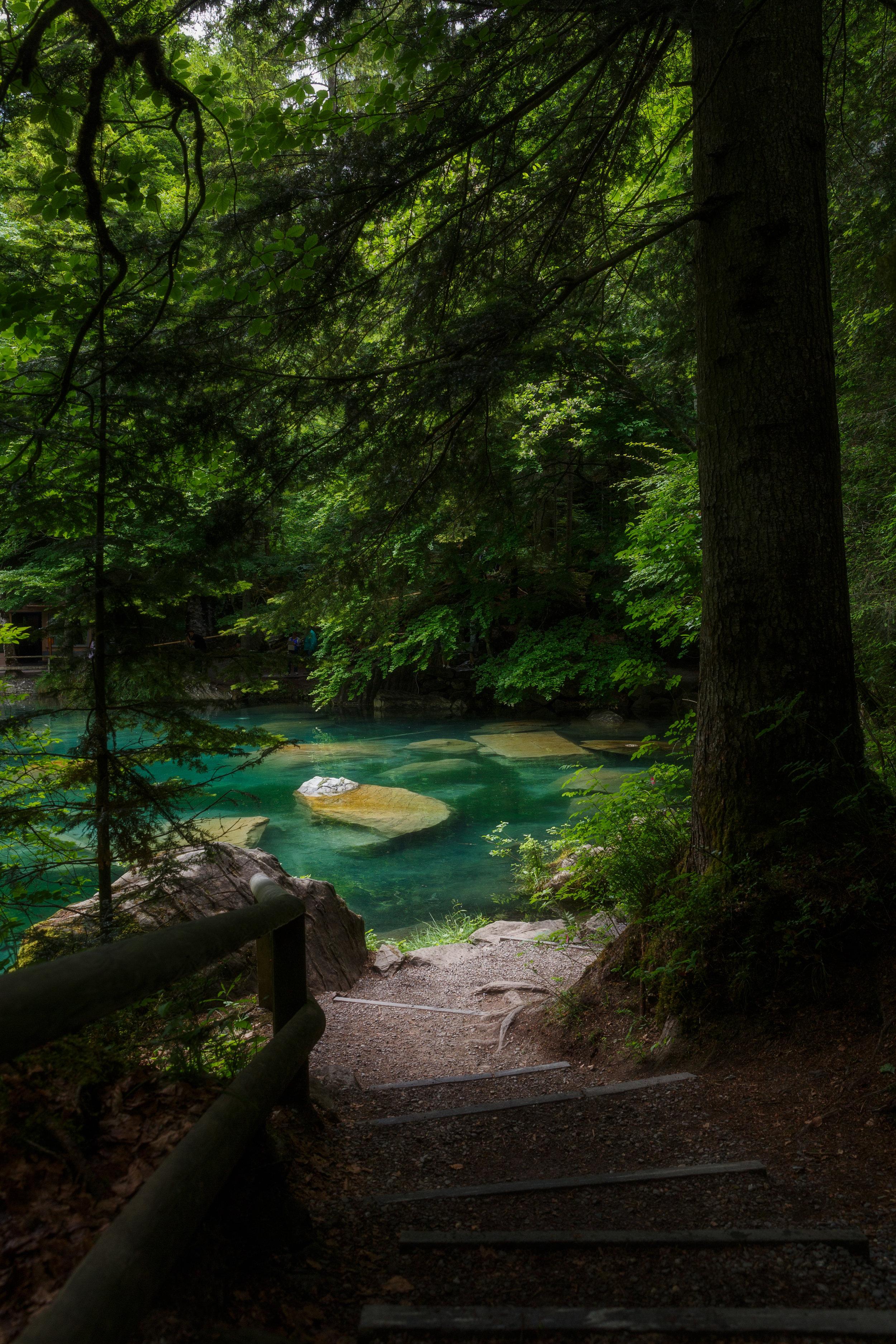 Winding Paths Around Blausee