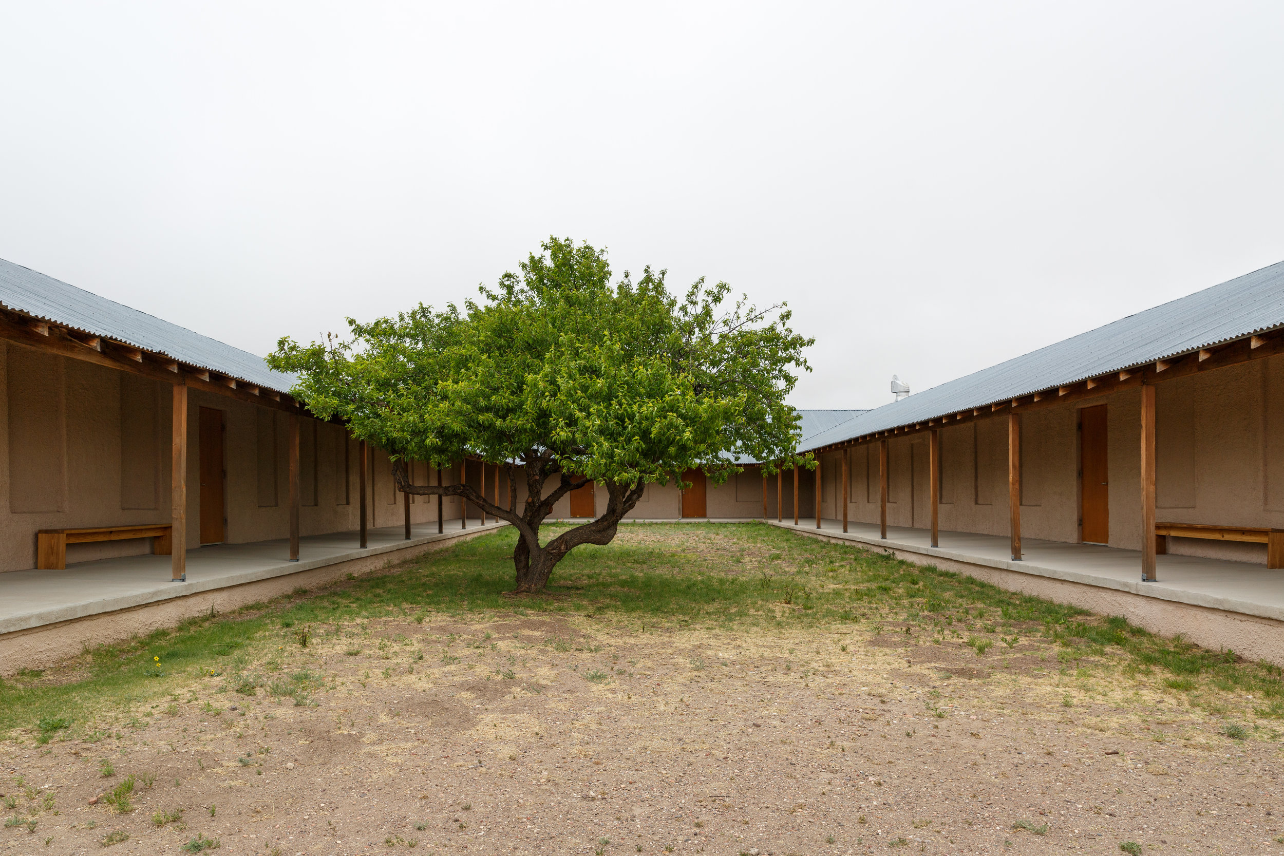 The courtyard of one of the barracks buildings complete with an artfully placed tree