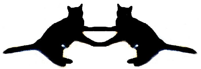 Rorschach Black Cats