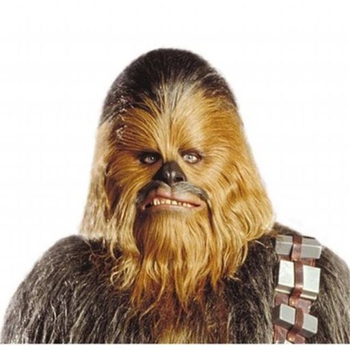 Star Wars Chewbacca Mask.jpg