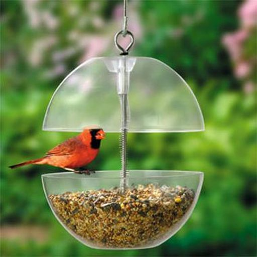 Squirrel Free Bird Feeder.jpg