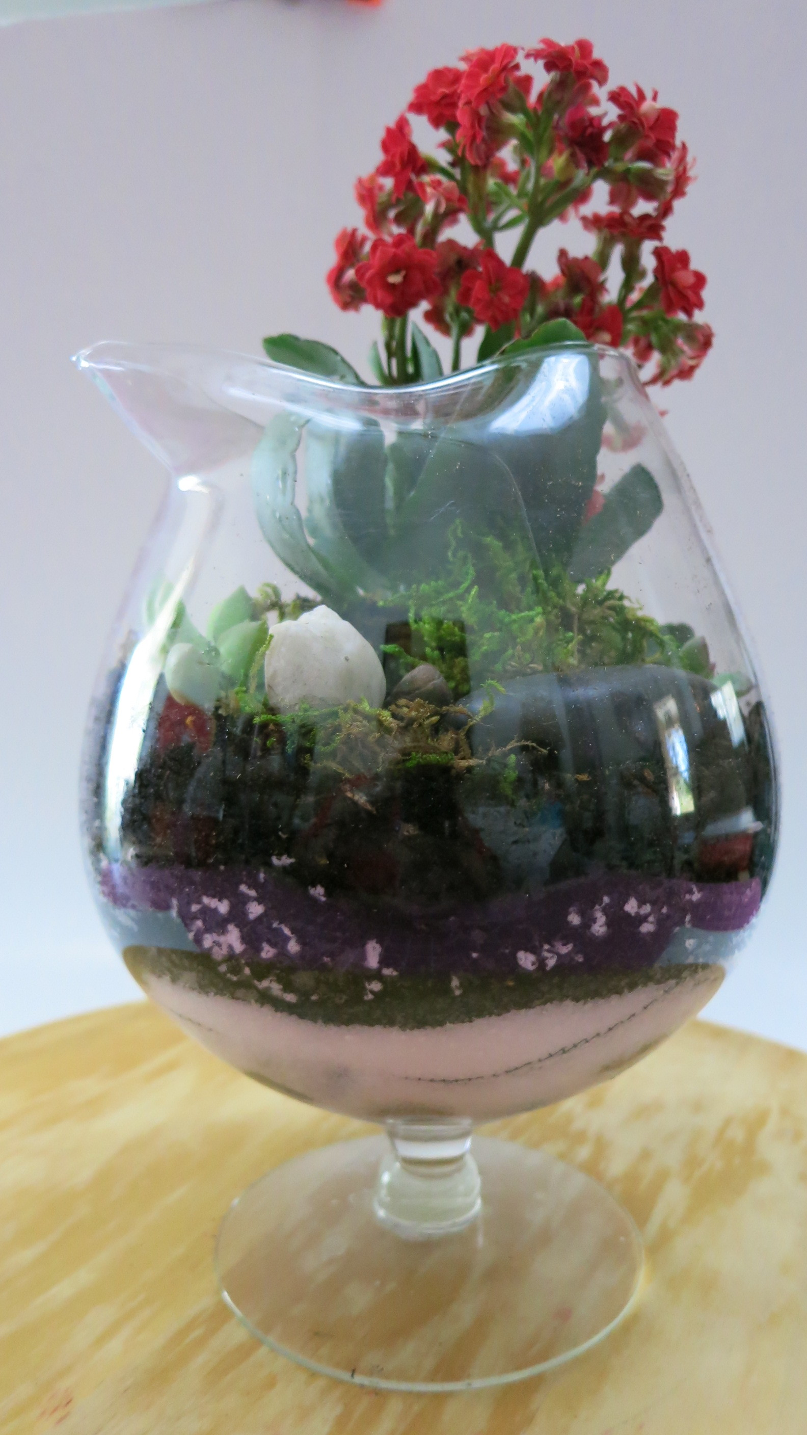 March 12, 2018 DIY: Plant a Flowering Succulent Open Terrarium in a glass pitcher. Fast and Easy Gardening.