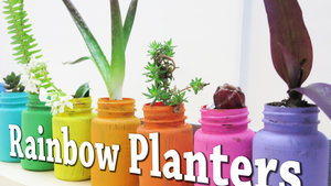 DIY+Rainbow+Planters+out+of+Recycled+Pill+Bottle.jpg