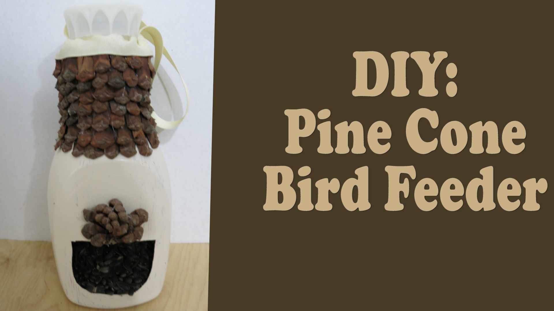How to Make a Pine Cone Bird Feeder from a Recycled Bottle.jpg