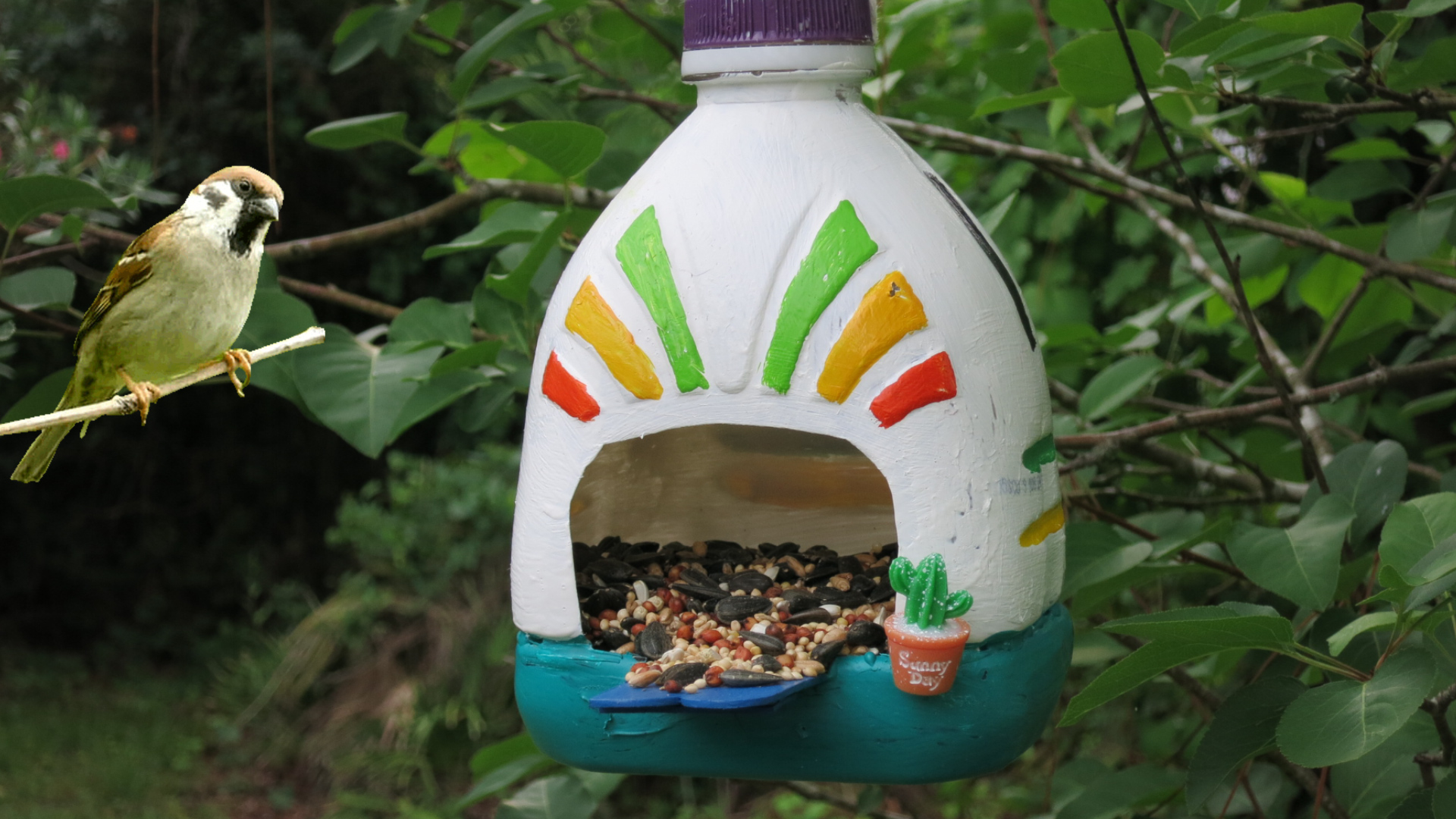 Adobe House Bird Feeder Made from a Recycled Bottle.jpg