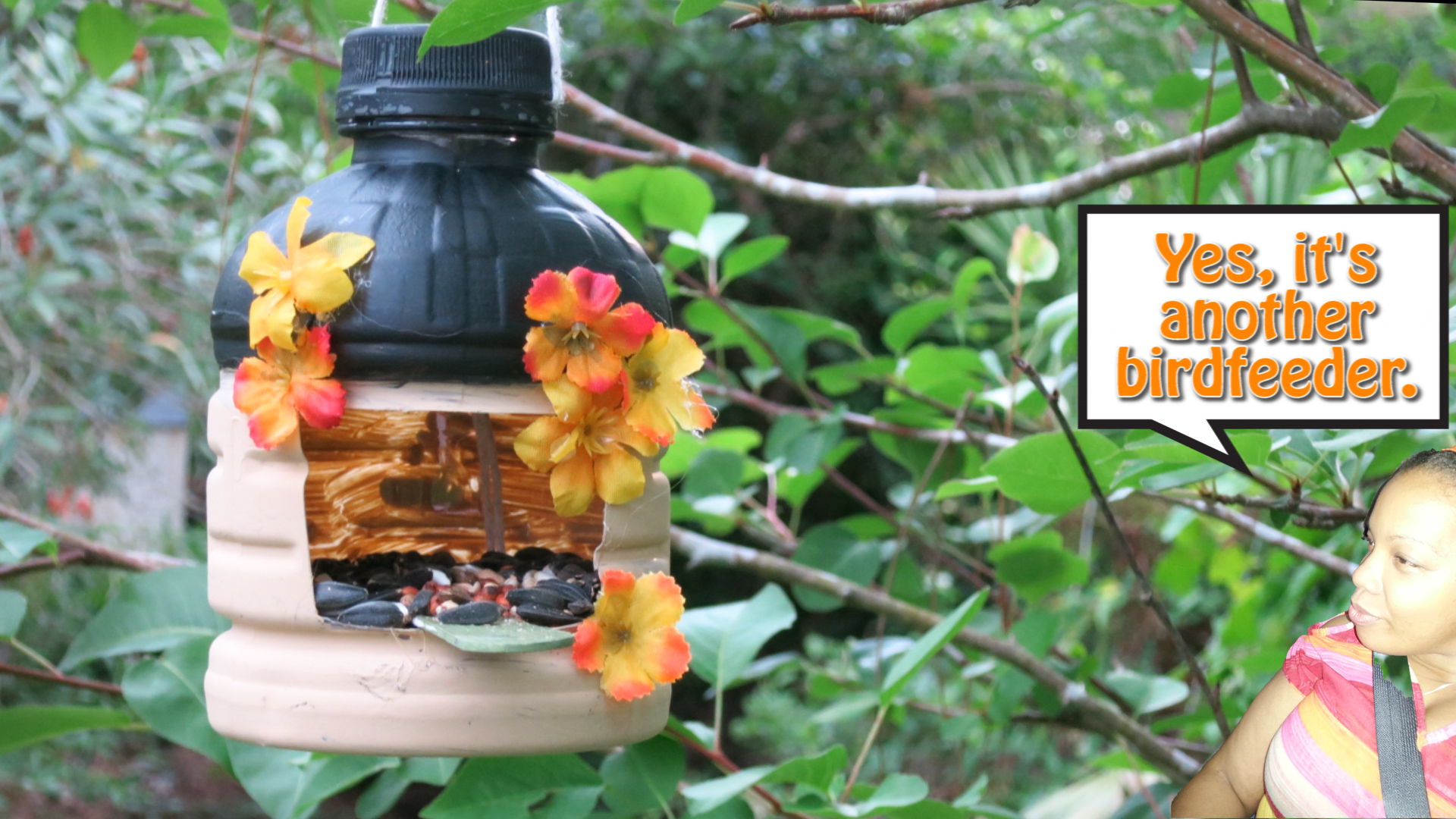 Hut House Bird Feeder Made from a Recycled Arizona Bottle.jpg