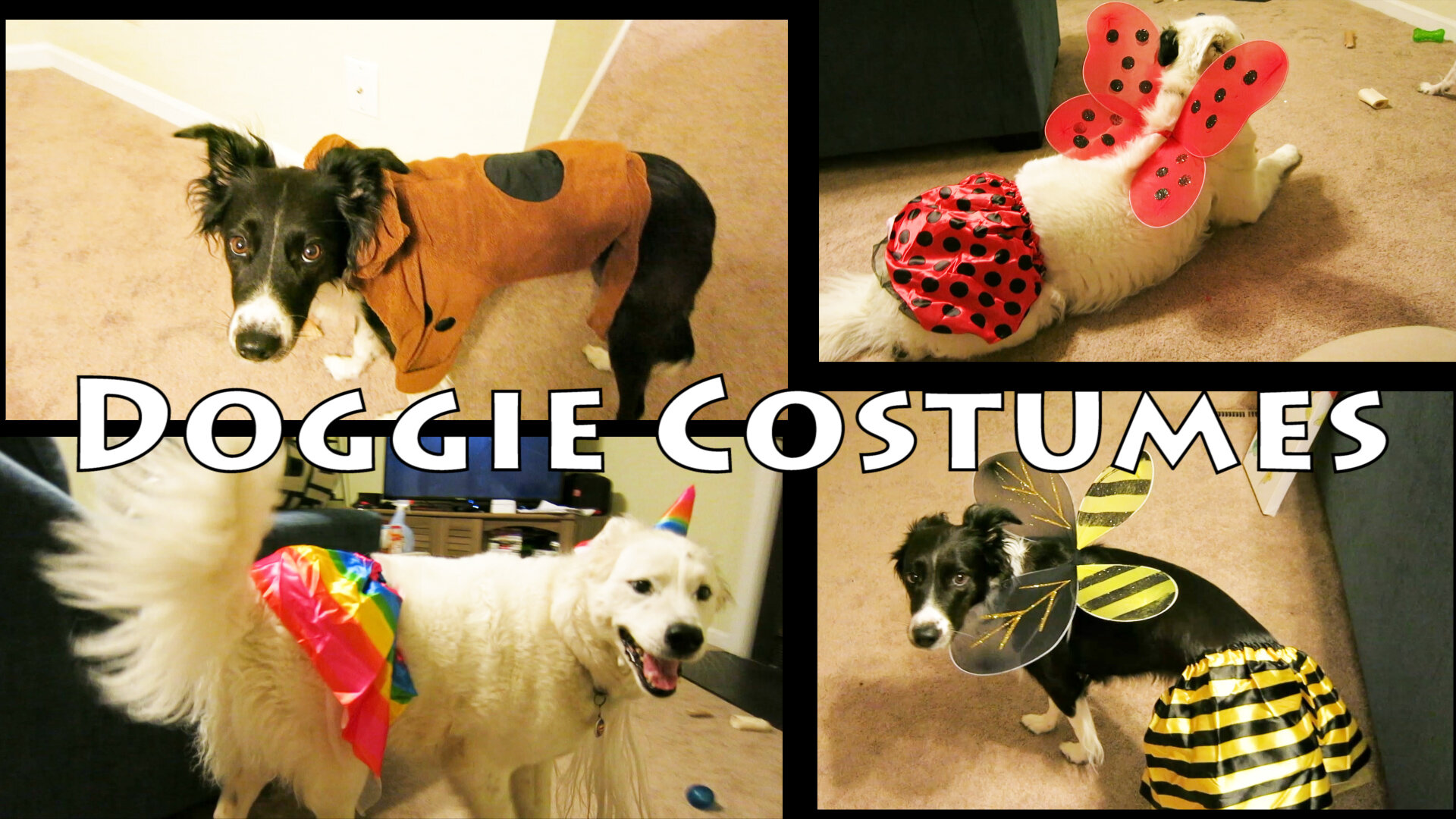 How to make a dog costume out of a kids costume bumble bee lady bug unicorn Scooby Doo 1.jpg