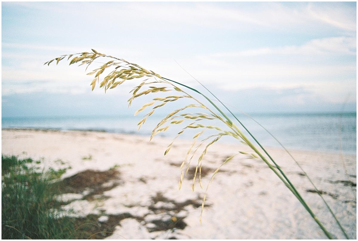 Abigail_Malone_Florida_keys_Travel_Photography_Film_Ektar_0037.jpg