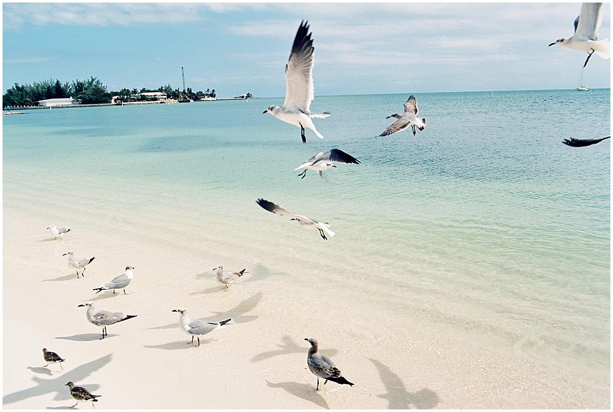 Abigail_Malone_Florida_keys_Travel_Photography_Film_Ektar_0032.jpg