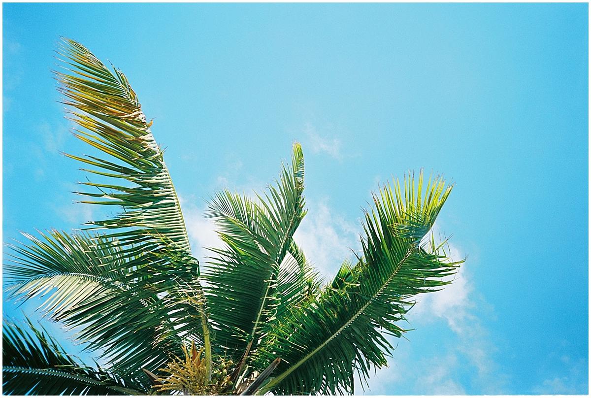 Abigail_Malone_Florida_keys_Travel_Photography_Film_Ektar_0020.jpg