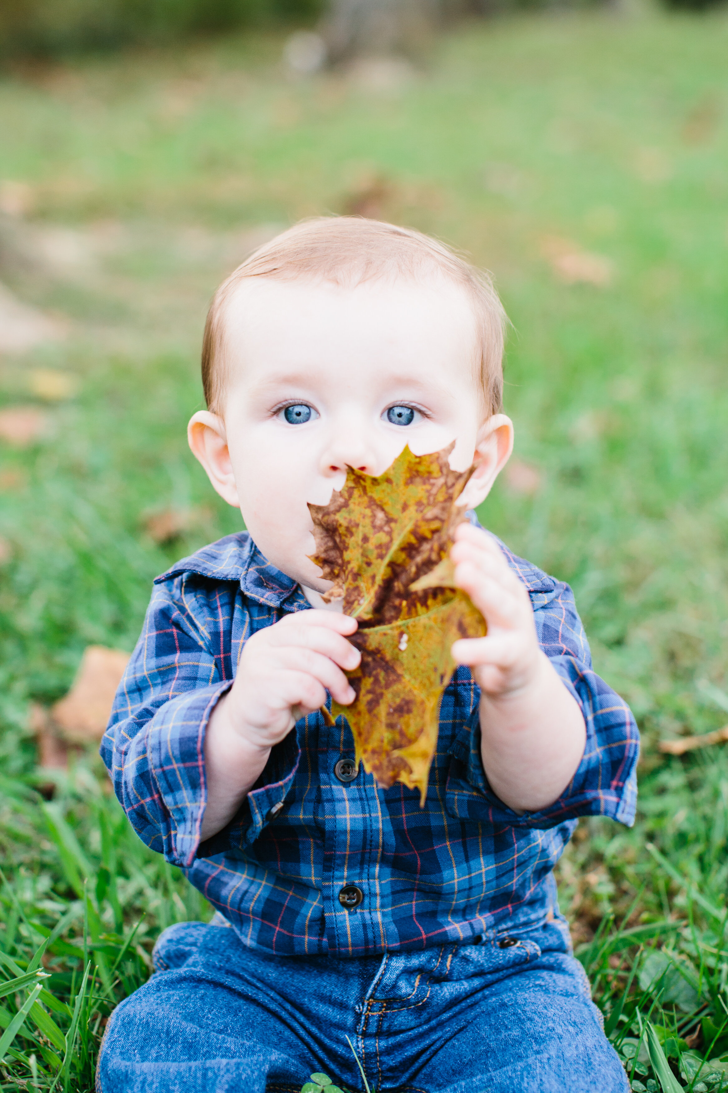 Raleigh_7months_Abigail_Malone_Photography-38.jpg