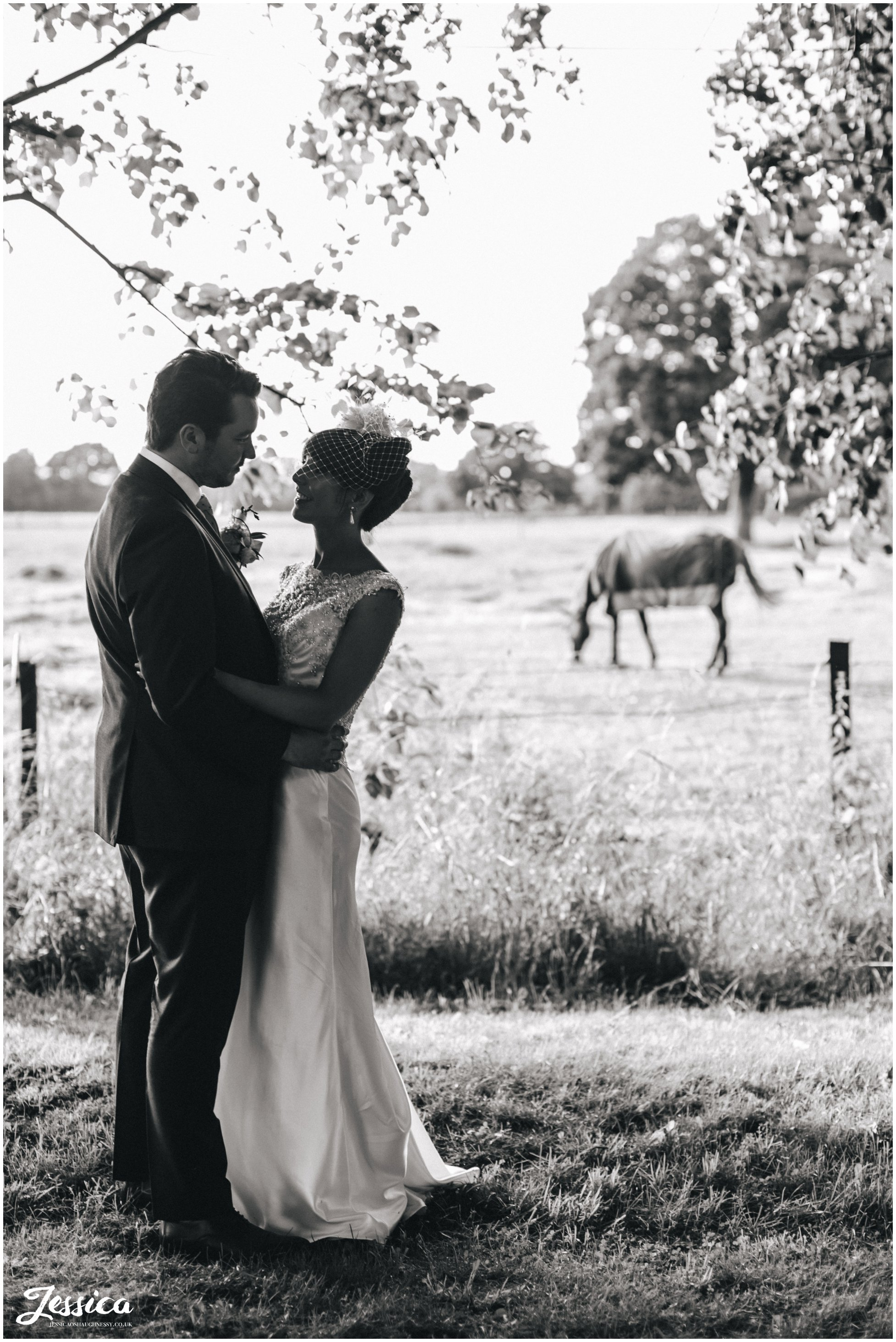 bride & groom overlooking horses at Trafford Hall - Chester Wedding Photography