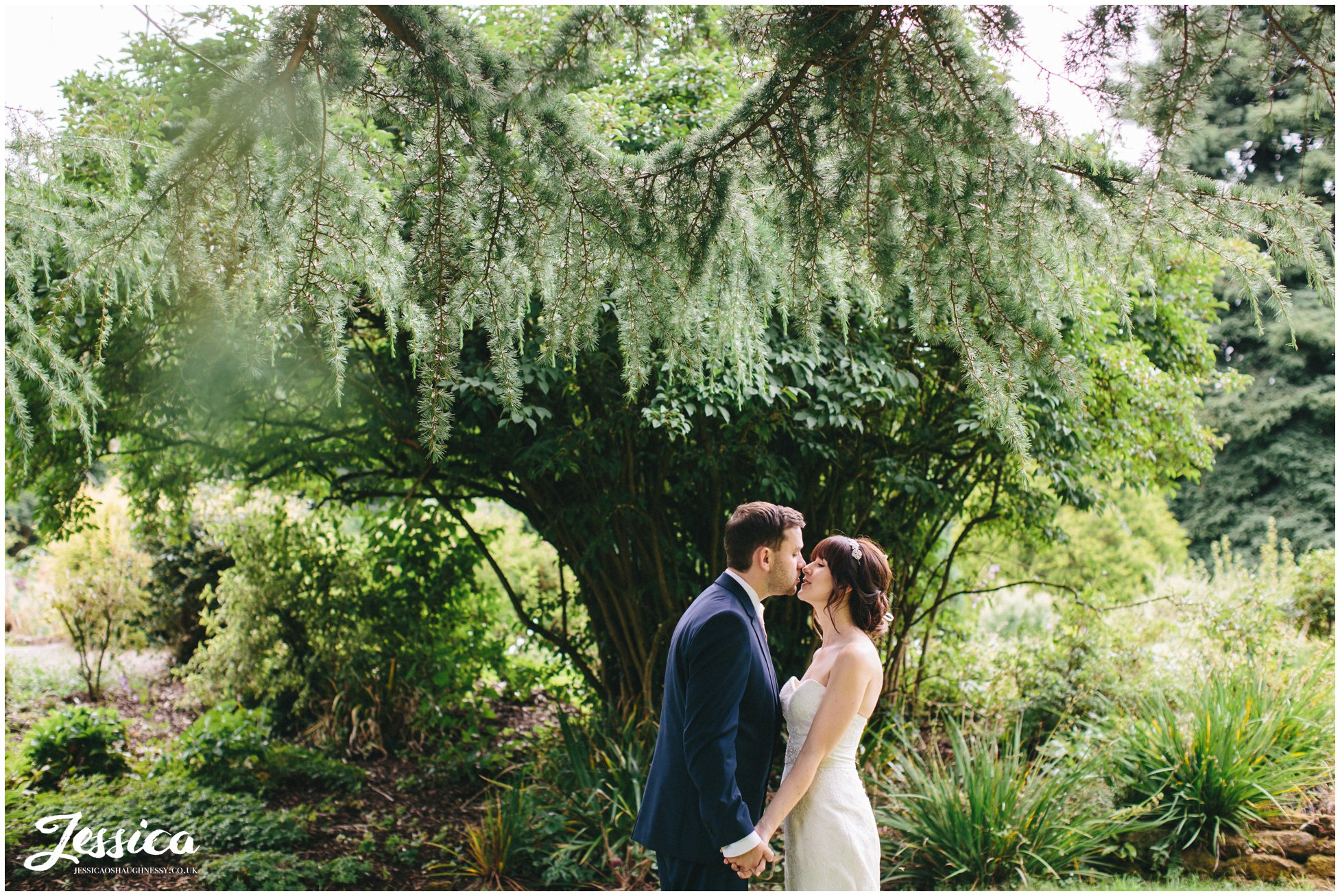 bride & groom kiss under the trees after their wedding ceremony at ness gardens
