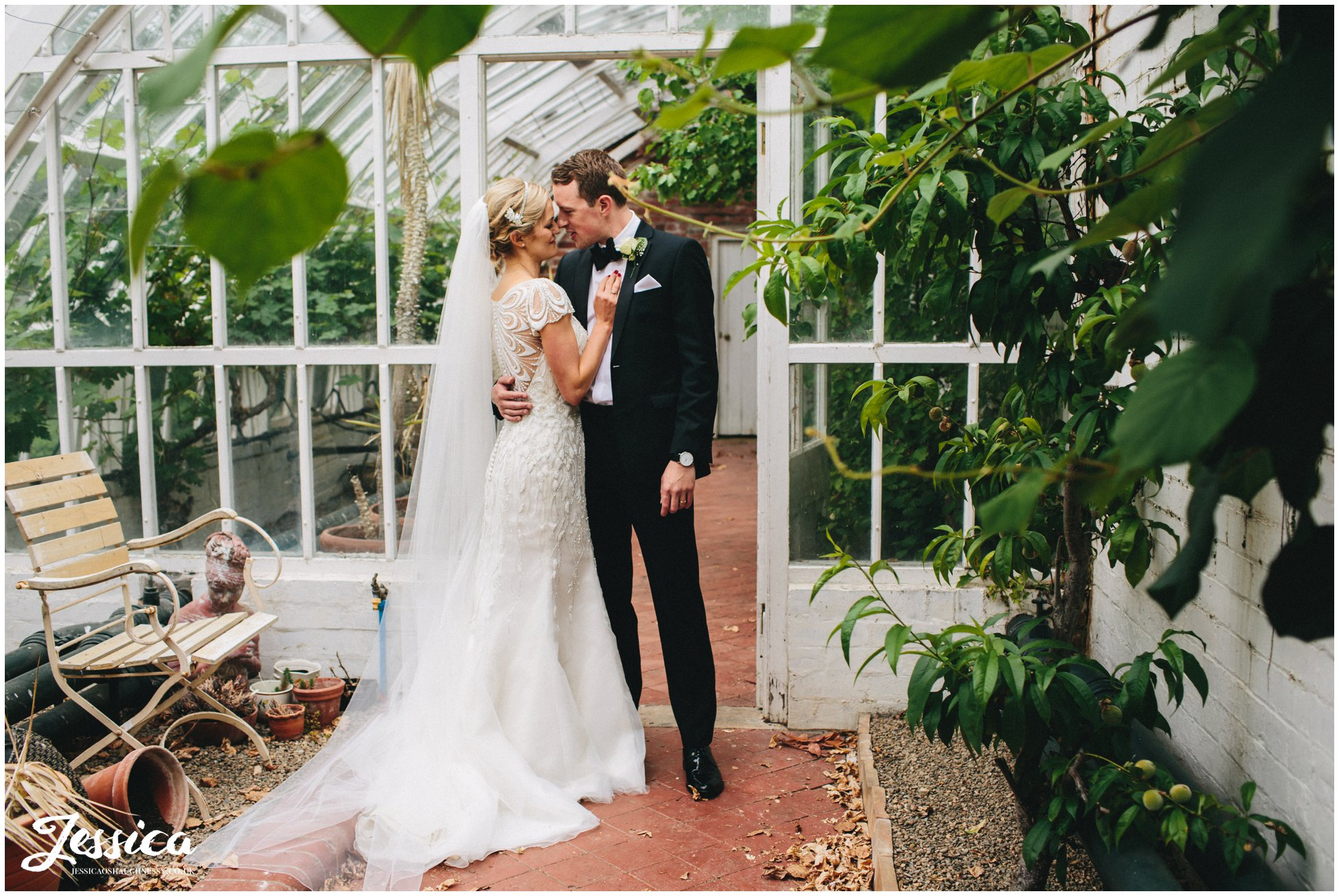couple photographed in the orangery at trevor hall