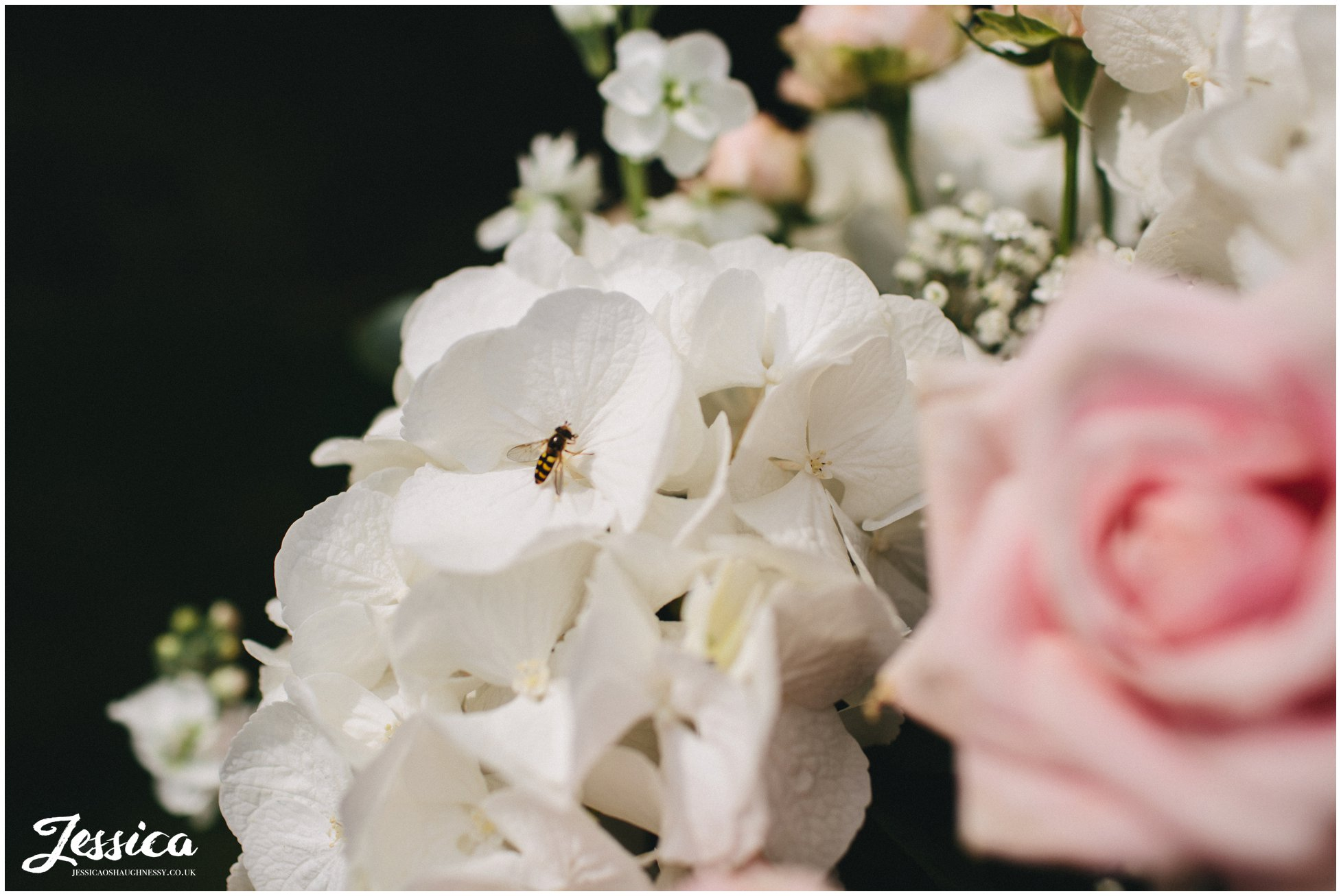 bee lands on flowers set up for the outdoor ceremony at nunsmere hall