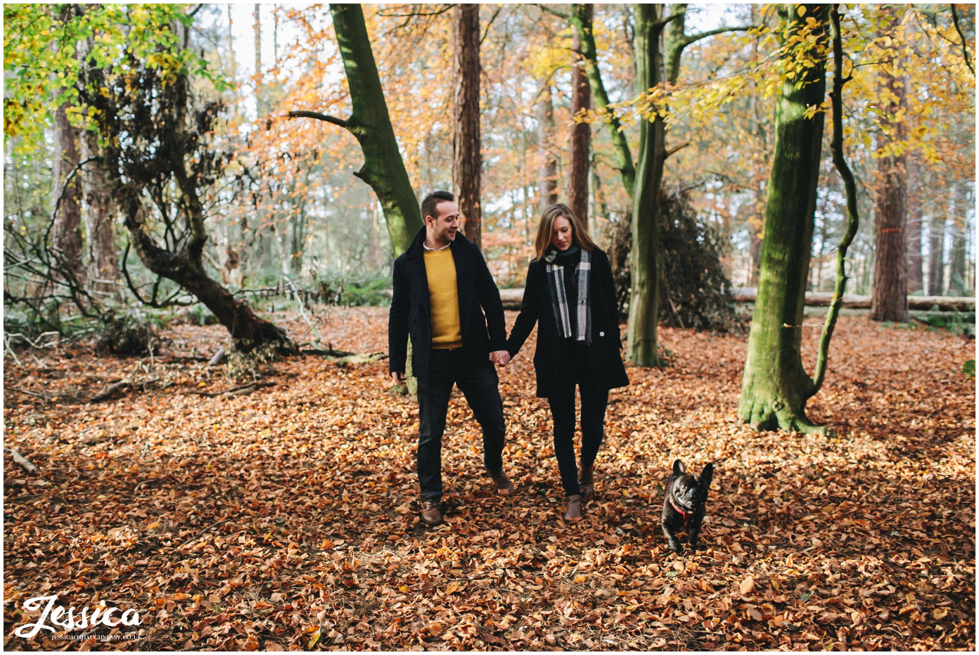 couple walk with their dog through autumn leaves
