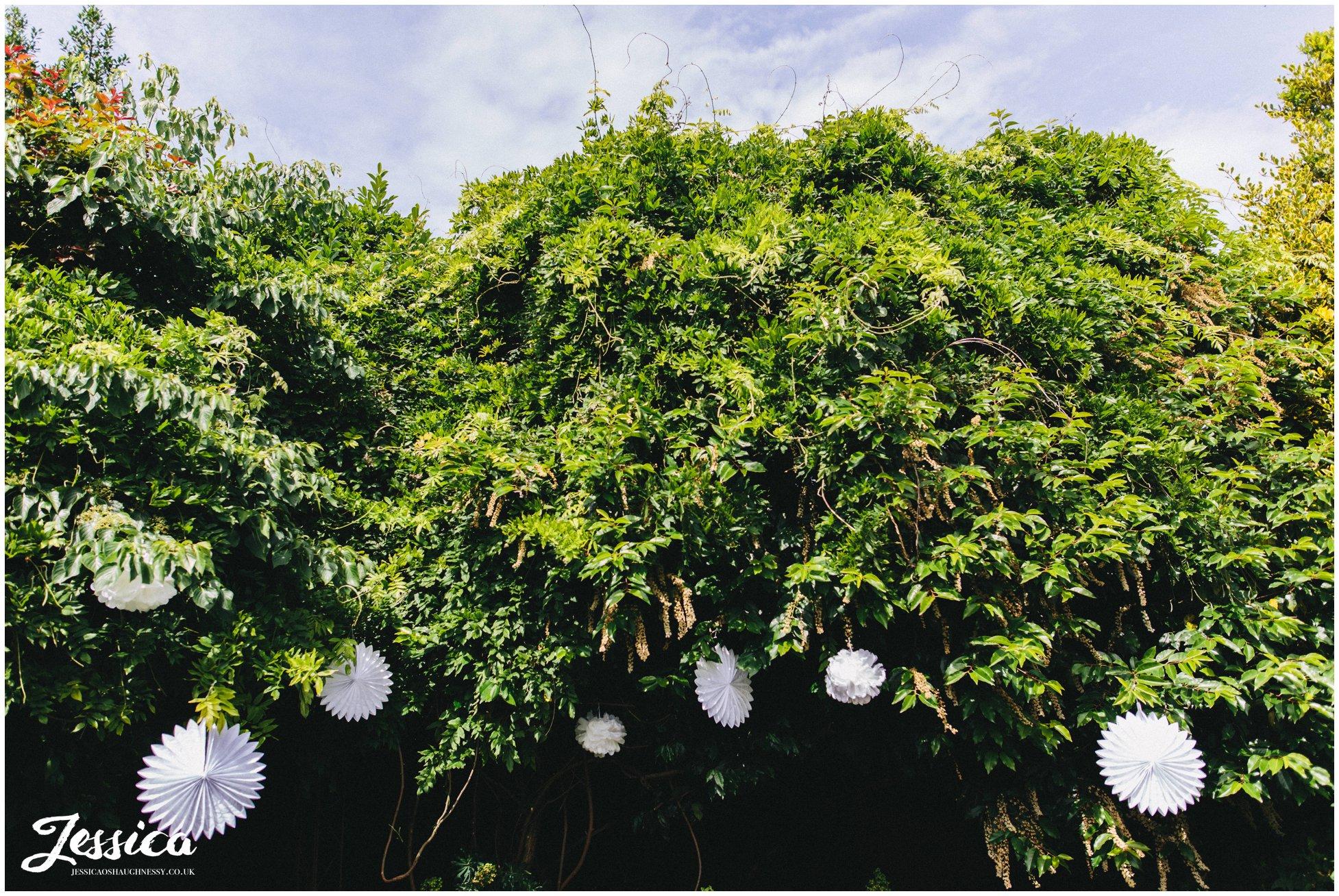 paper lanterns decorate the roof garden at belle epoque wedding venue