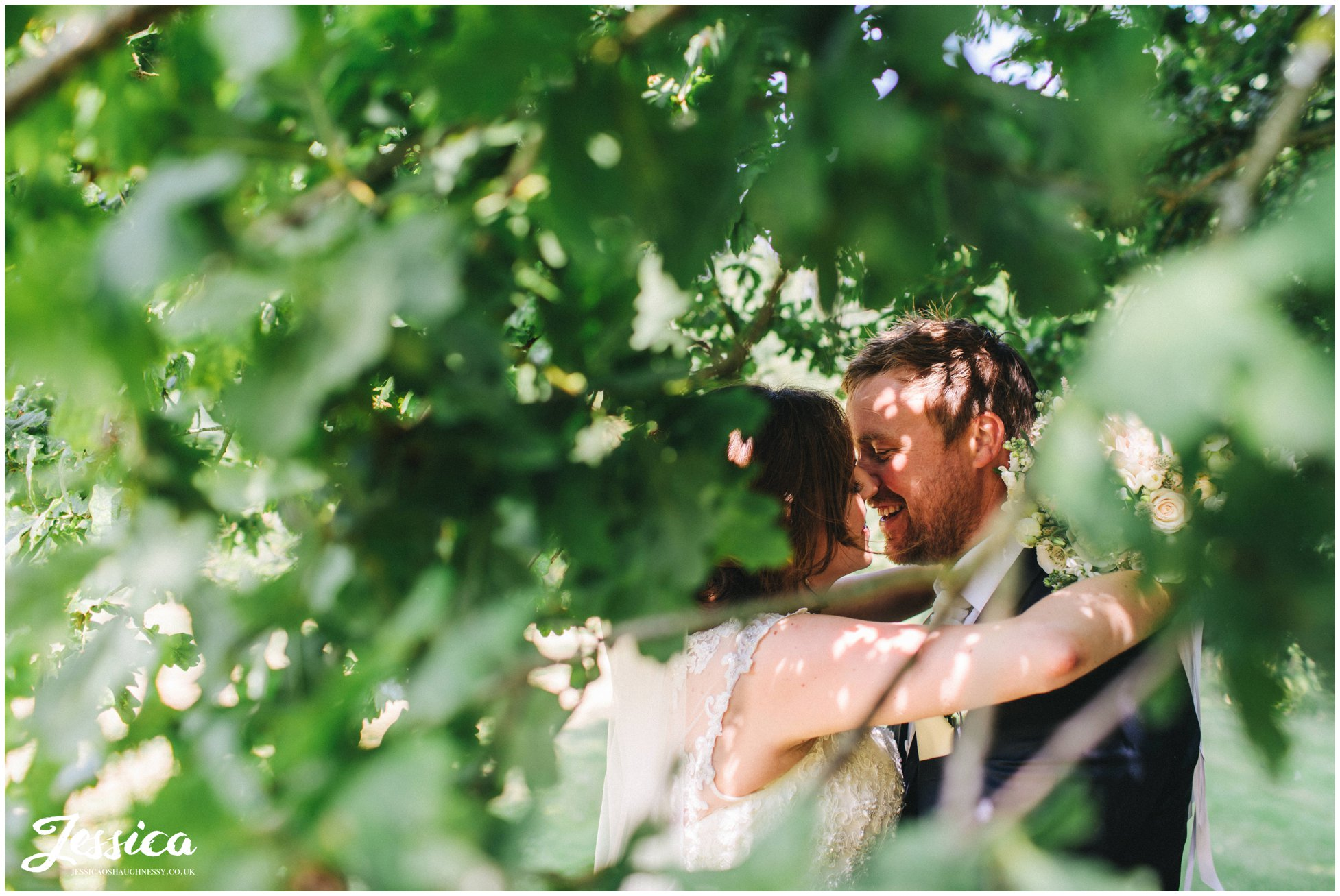 the newly wed's kiss through a gap in the leaves