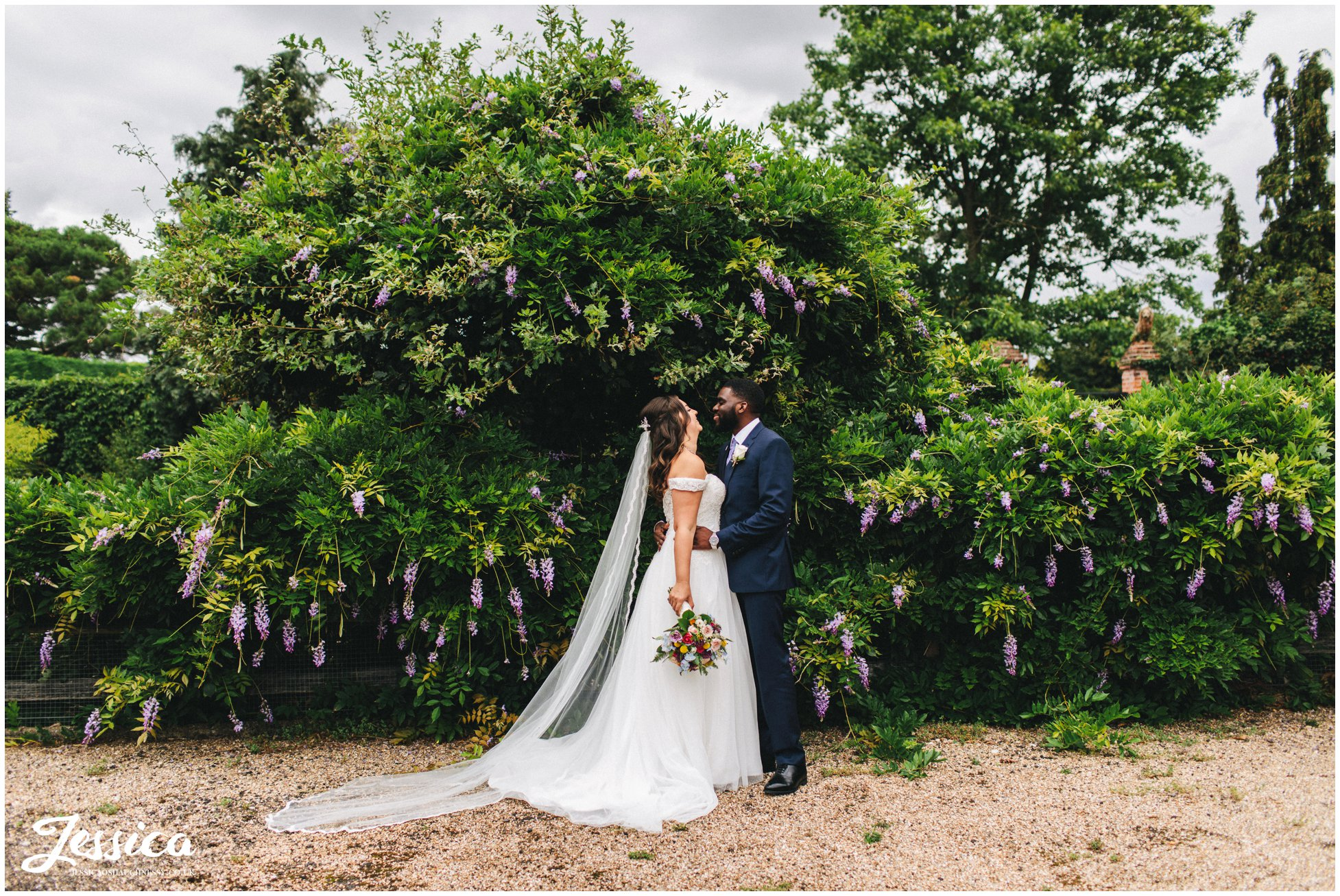 the couple kiss in front of wisteria