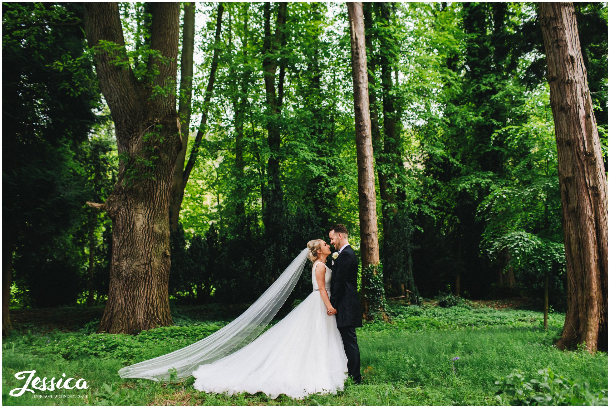 the couple walk through the woodland area at tyn dwr hall