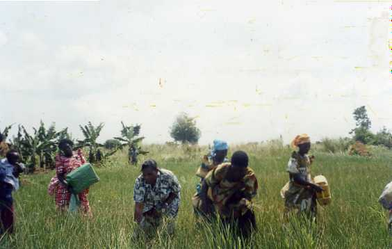 uganda003.jpg