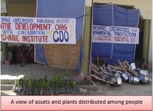 Creative Development 2012 7.jpg