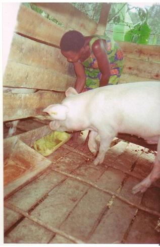 Beneficiary feeding boer -RUWO (2).jpg