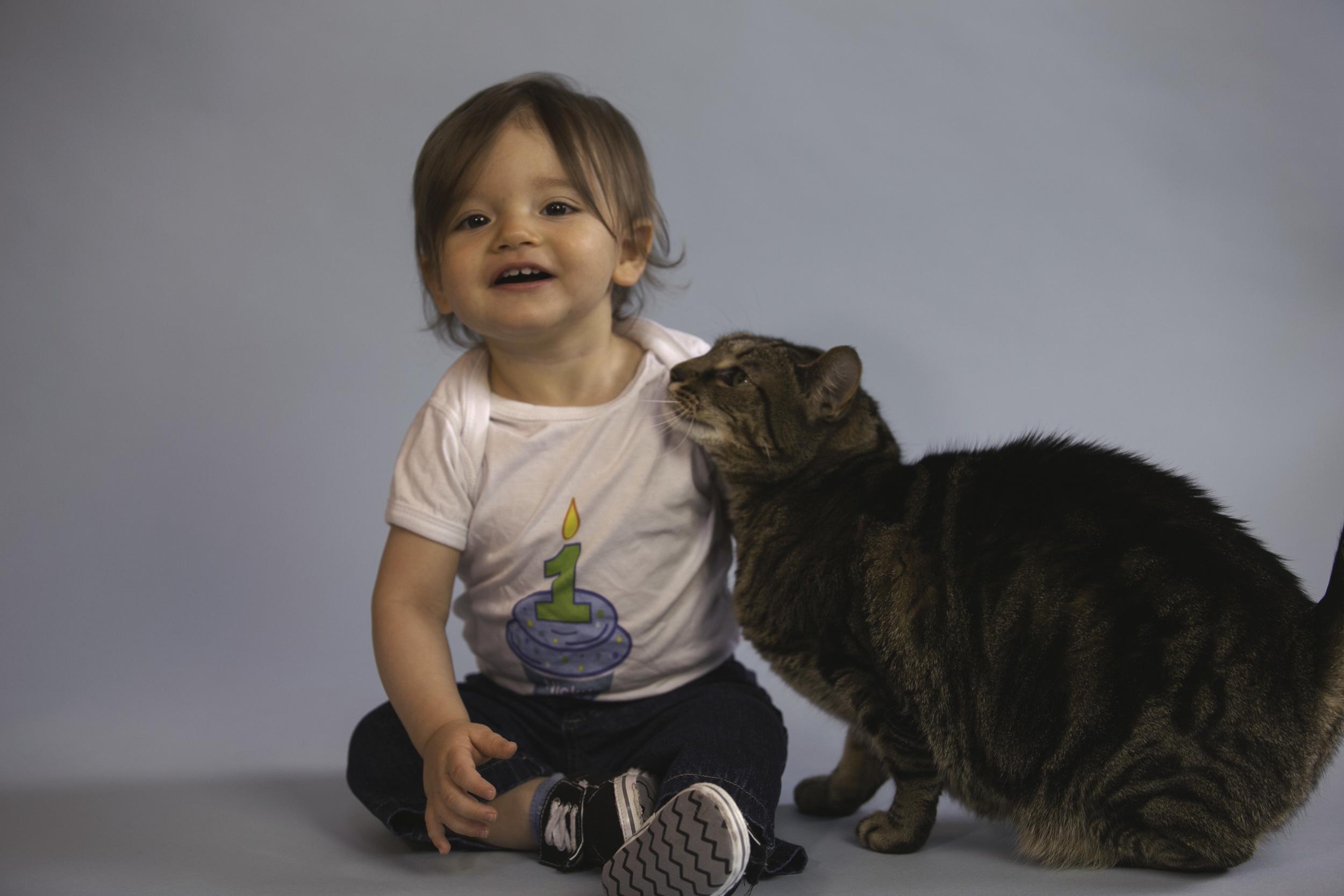 Studio kitty - Phoenix.