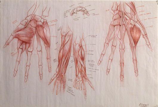 hand.72 copy.jpg