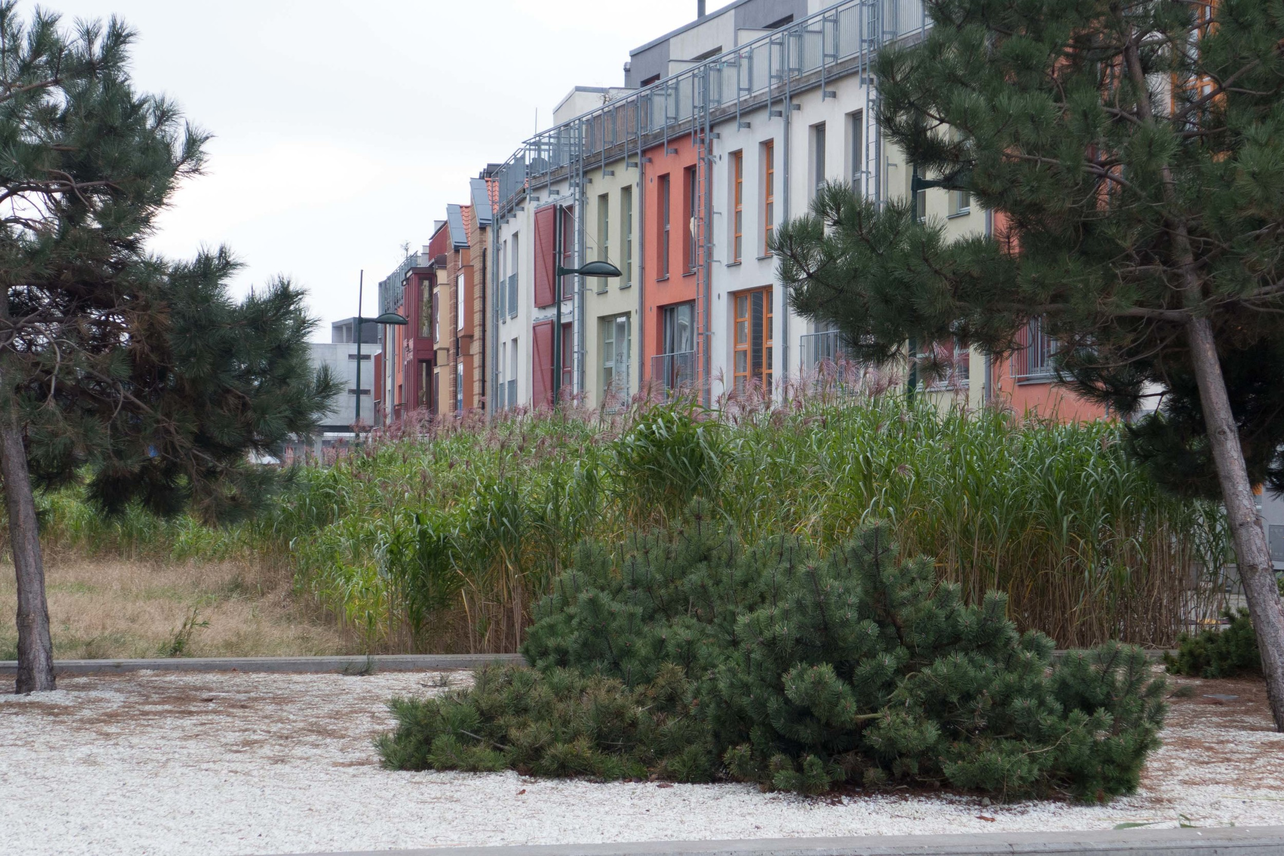 Malmo courtyard 3.jpg