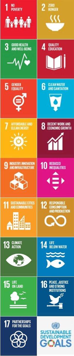 UN 17 Goals.jpeg
