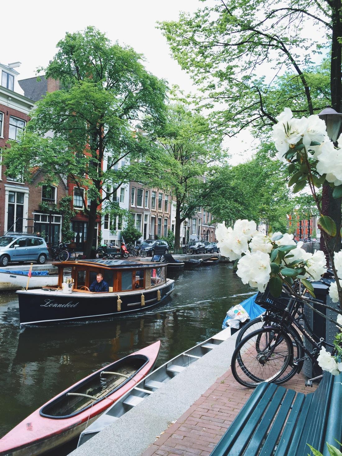 one night stand amsterdam
