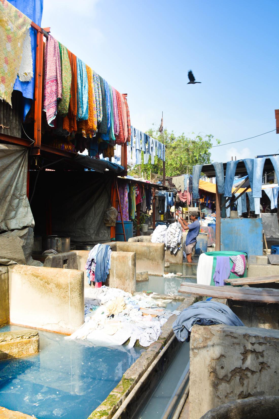 Mumbai Dhobi Ghat laundry
